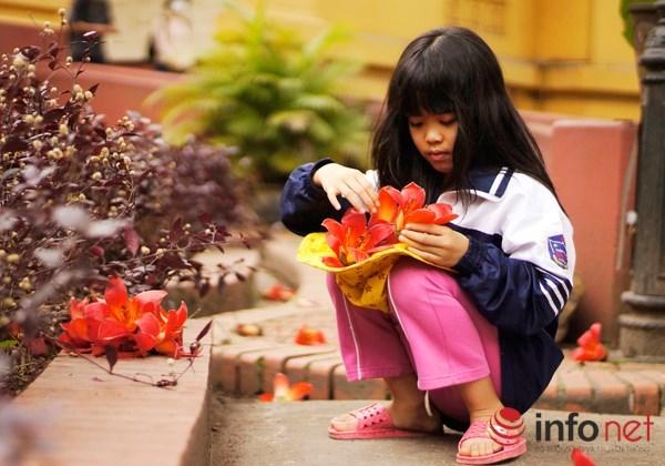 Hà Nội tháng Ba, miên man mùa hoa gạo