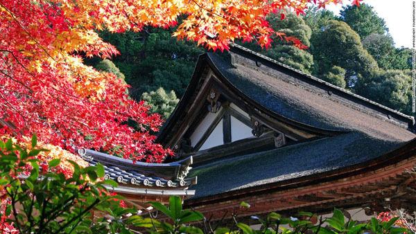 Những thắng cảnh đẹp tựa cõi tiên ở Nhật Bản