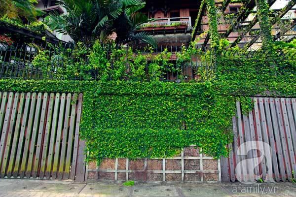 Đại gia Hà thành trốn nóng trong biệt thự phủ kín cây xanh