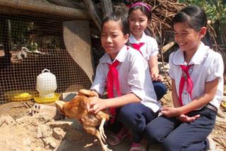 Hình ảnh đối lập vụ quan xã 'ăn gà, nhím' của dân nghèo