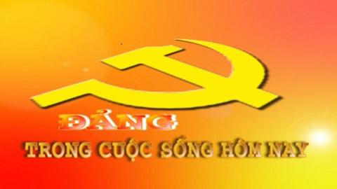 Xây dựng Đảng về văn hóa, Vai trò lãnh đạo của Đảng, TS. Vũ Ngọc Hoàng