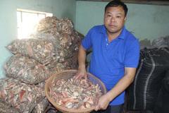 Kinh ngạc căn hầm chứa 10 tấn rượu 'tan cửa nát nhà'