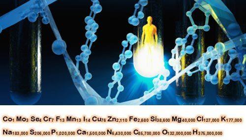 Hé lộ công thức hóa học của cơ thể người