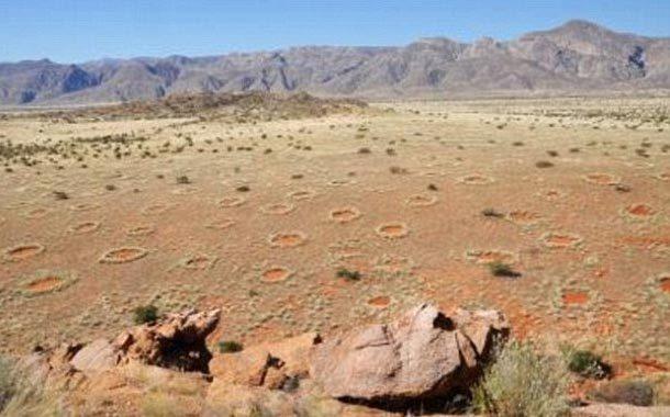 """Các vòng tròn bí ẩn tiết lộ """"lớp da"""" của Trái đất? - 1"""