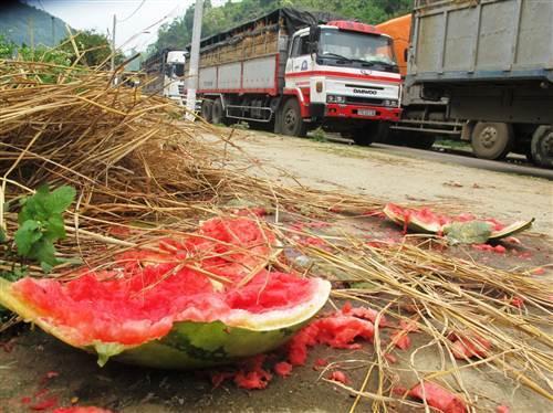 Ùn tắc ngàn tấn dưa hấu sang TQ: Bất lực kéo dài