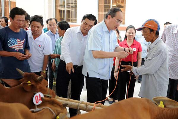 Chủ tịch MTTQ tặng bò cho nông dân nghèo