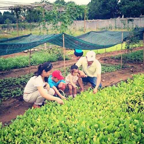 trang trại, nông dân