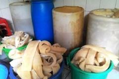 Cơm tấm ngâm thuốc độc: Ám hại người Sài thành