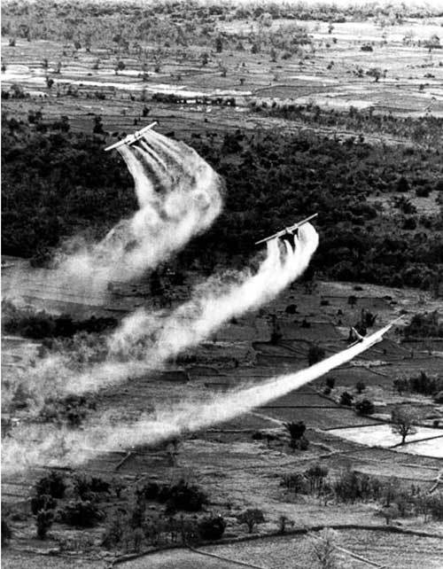 Chiến tranh Việt Nam qua ống kính nước ngoài - 5