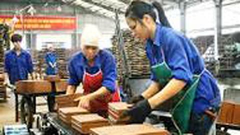 Người lao động, Công ty, nghỉ việc, bảo hiểm thất nghiệp