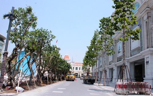 Phố đi bộ Sài Gòn lắp đèn tín hiệu giao thông có âm thanh - 4
