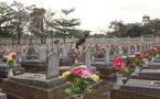 Chuyện người em gái đi tìm mộ 3 anh trai liệt sỹ