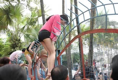 Tranh, cướp ăn chơi miễn phí: Chất xấu xí ở nơi Hà Thành