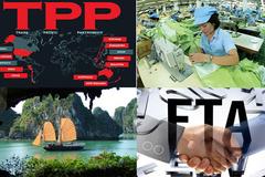 Không nước nào dám 'dũng cảm' như Việt Nam