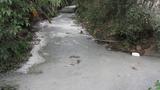 Ô nhiễm kênh mương ở Kiến An- Hải Phòng