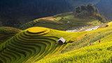 5 cung đường dân phượt nên thử một lần trong đời ở Việt Nam