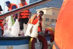 Thả 500 ngàn cá giống làm sạch nước kênh Tàu Hủ