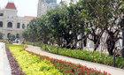 Vận hành phố đi bộ Nguyễn Huệ trước 30/4