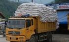 Giải cứu hàng ngàn tấn gạo ùn tắc ở cửa khẩu