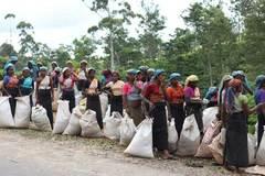 Phượt Srilanca: Thưởng trà và sống chậm