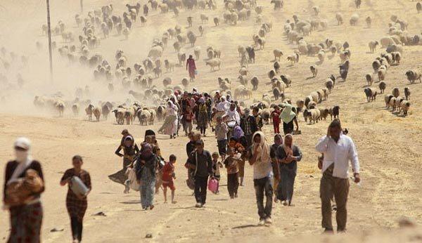 IS thảmsát 300 con tin Iraq