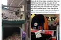 Bài học từ bức ảnh 'tự sướng' trước thảm hoạ của thành viên hội Chữ Thập Đỏ