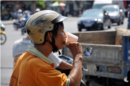Trốn nắng gần 40 độ dưới hàng cổ thụ trên phố Sài Gòn