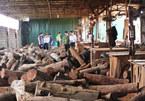 Bộ Công an đột kích kho gỗ lậu cực lớn