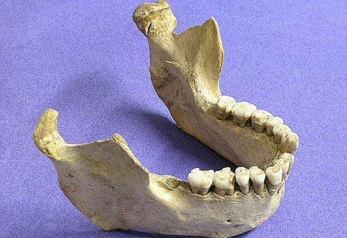 Mảnh xương tiết lộ 'chuyện yêu ngoại chủng' của người hiện đại