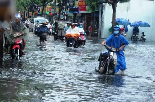 Người dân Sài Gòn rùng mình lội nước thối sau mưa - 2