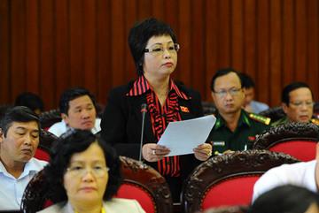 QH sẽ xem xét bãi nhiệm đại biểu Châu Thị Thu Nga