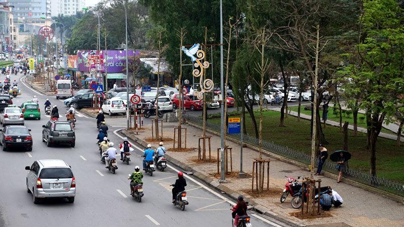 cây xanh, thanh tra, mỡ, vàng tâm, Hà Nội, đường sắt đô thị