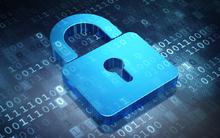 Việt Nam đứng thứ 9 toàn cầu về 'hoạt động đe doạ bảo mật Internet'?
