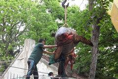 Mua con cá mập nửa tấn về xẻ thịt khao cả làng