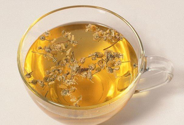 hoa cúc, trà hoa cúc, trường thọ, sống lâu, tử vong
