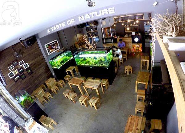 quán cà phê, Đà Nẵng
