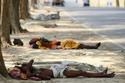 Số người chết vì nắng nóng ở Ấn Độ tăng chóng mặt