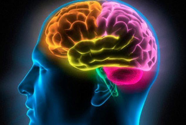 IQ, bệnh viêm nhiễm, trí não