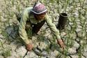 Sắp có báo cáo độc lập về biến đổi khí hậu tại Việt Nam