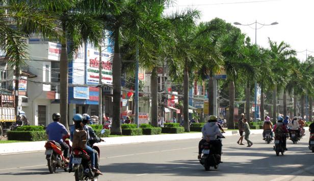 cây xanh, đấu thầu, Cần Thơ, Ninh Kiều, 18 tỷ bão dưỡng cây xanh