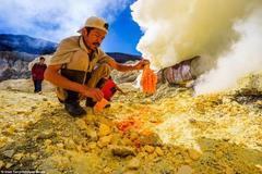 Nghề tồi tệ nhất thế giới: Mưu sinh trên miệng núi lửa tìm chất độc