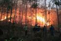 Cháy rừng ở Thanh Hóa: Di dân khẩn cấp