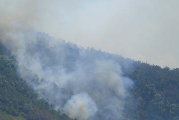 Nắng 40 độ, hơn 500 người chưa dập tắt được cháy rừng