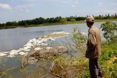 Lật thuyền trên hồ Trị An, 3 em nhỏ chết đuối