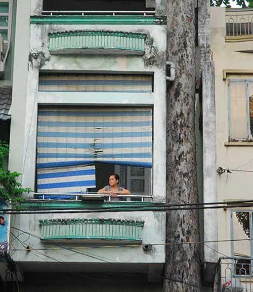 Dỡ căn nhà mặt phố Sài Gòn để cứu một cây cổ thụ