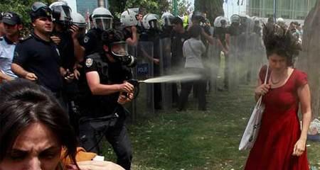 Cảnh sát bị phạt trồng hàng trăm cây xanh vì hành vi xấu
