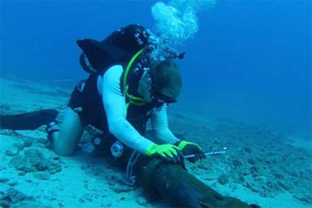 Đứt cáp quang biển: Khách hàng Viettel không bị ảnh hưởng