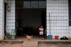 TQ chấn động vụ 4 trẻ chết vì thuốc trừ sâu