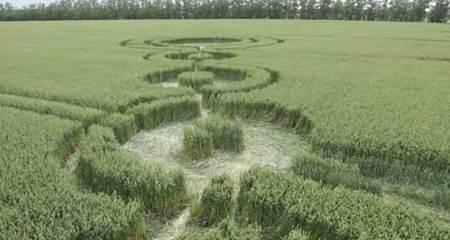 Bí ẩn những vòng tròn trên cánh đồng ở Nga