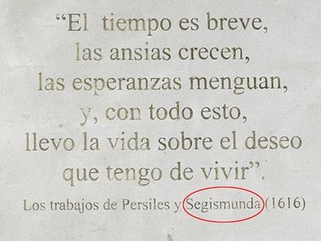 lỗi chính tả, Viện Hoàng Gia, Tây Ban Nha